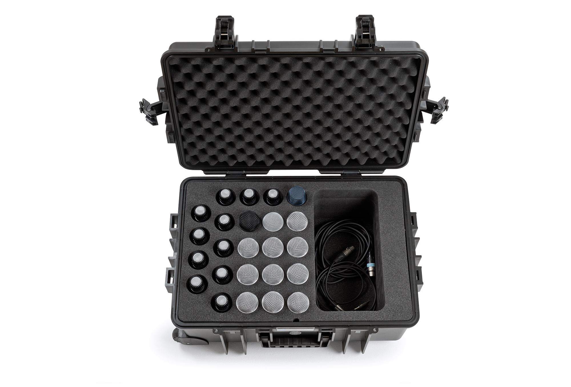 B&W outdoor.case for 24 microphones | type 6700