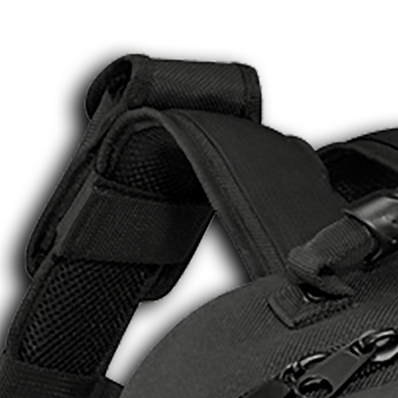 Padded backpack carrying system